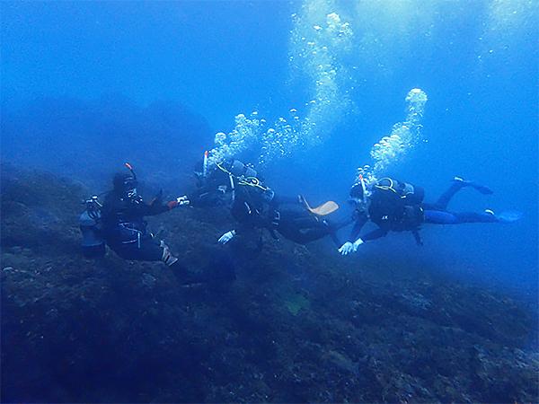 八丈島, ダイビング, 体験